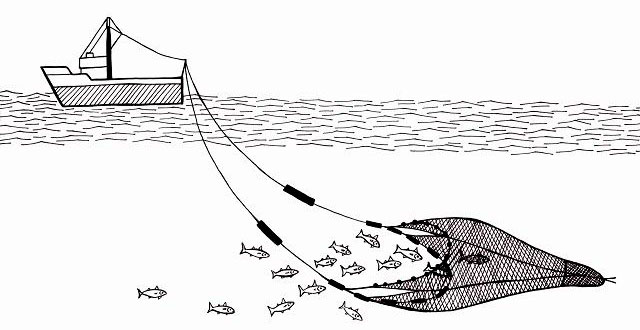 Тралловая ловля зубатки